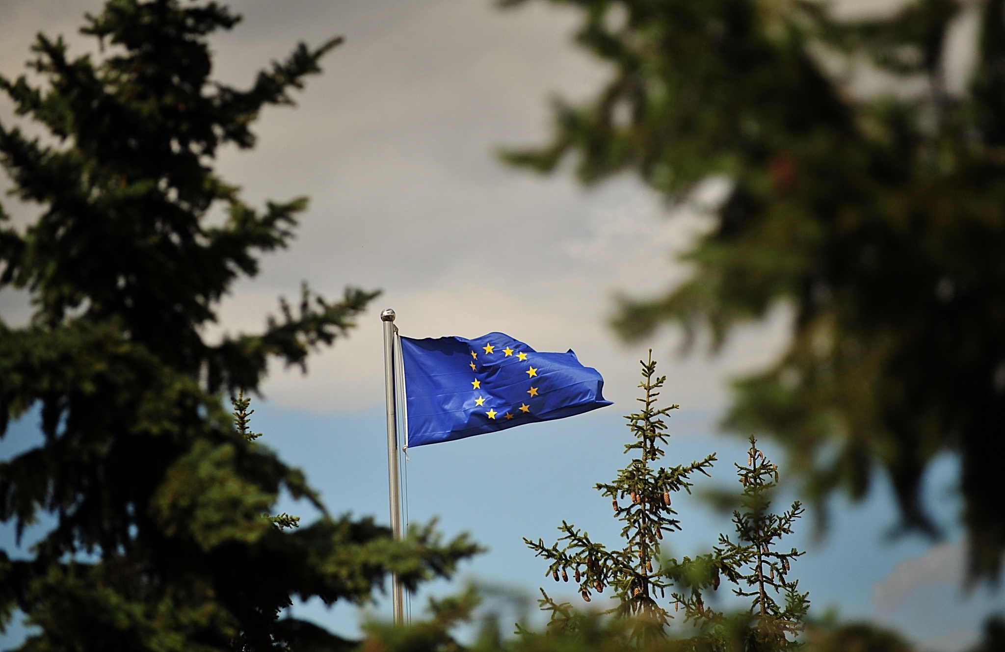 Statement By Eu Office In Kosovo Eu Special Representative And Eulex